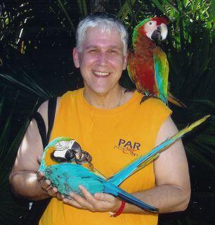 Ron-Parrots-copoy