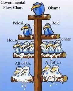 Govt flow chart